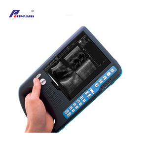 Palmtop Digital Ultrasound Scanner for Human Or Veterinary (WHYB3000)